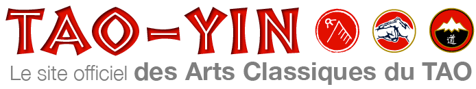 TAO-YIN Logo