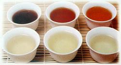 thé infusé pour dégustation