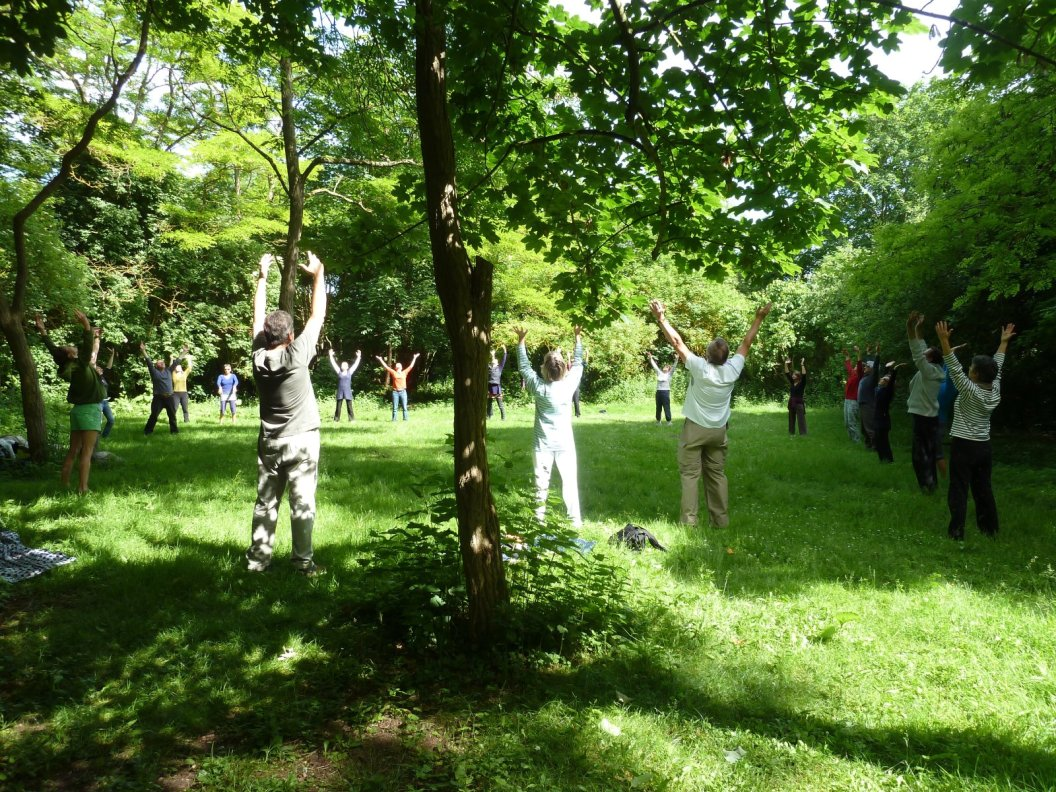 2012-06-17-10.11.11_Taoyin.Ouistreham_qigong_arbres