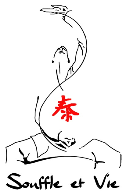 logo SV fond blanc