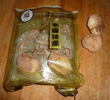 Hericium erinaceus