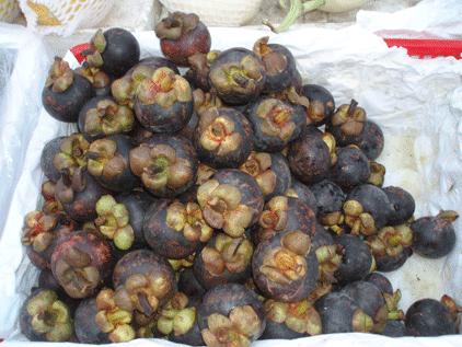cuisine chinoise mangoustans